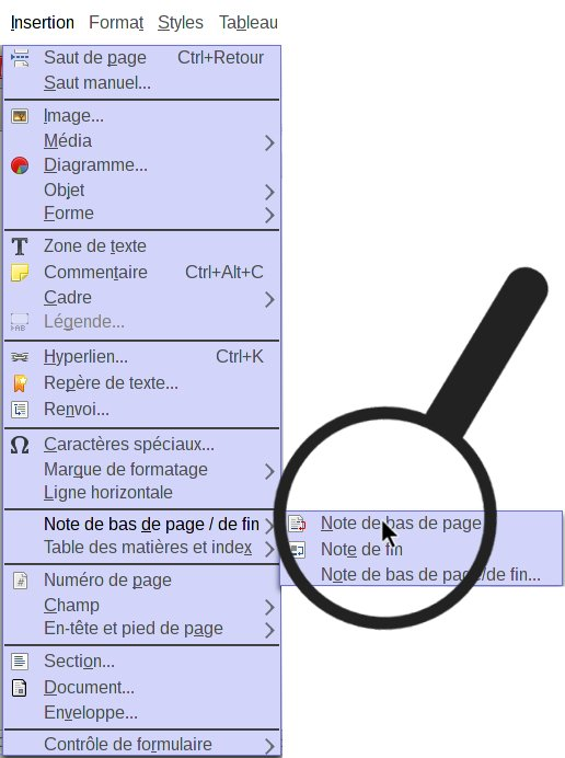 note de bas de page fenetre insertion